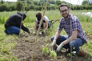 SSE Fellow Ciaran Biggins plants vegetables at his social enterprise Mind Food