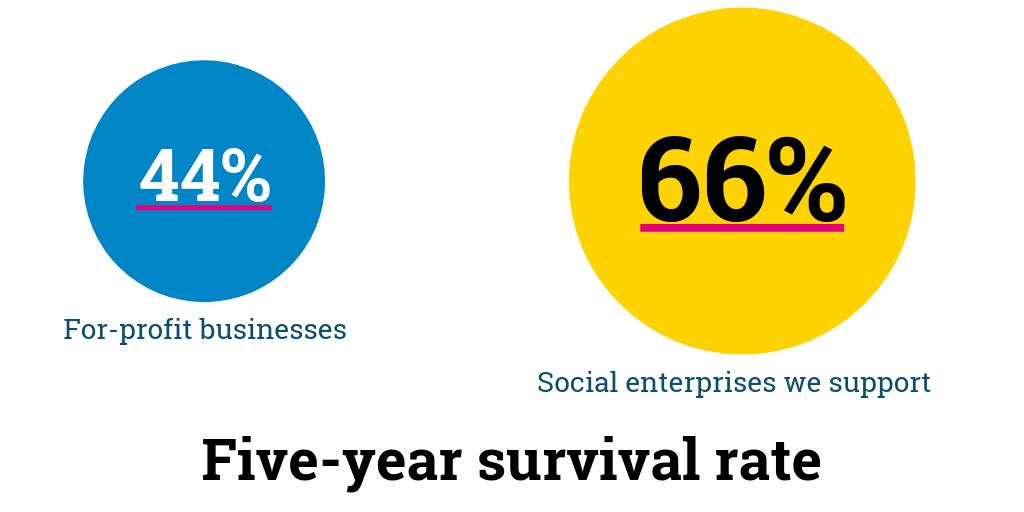 Impact The School for Social Entrepreneurs