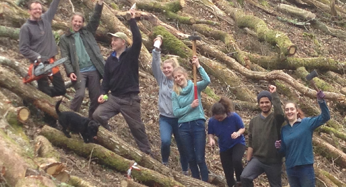 A group of people in the forest, all raising their hands and axes ready to chop wood